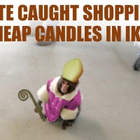 Bad Luck Bi... er... Primate seen in IKEA